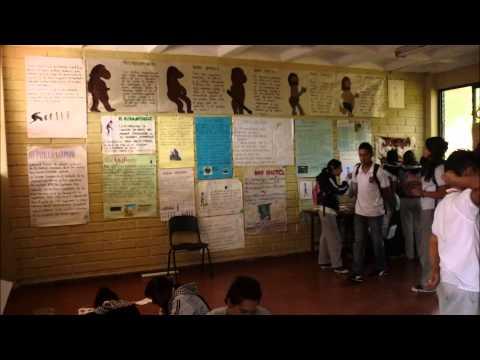 Memorias Visuales: Muestras pedagógicas  2011