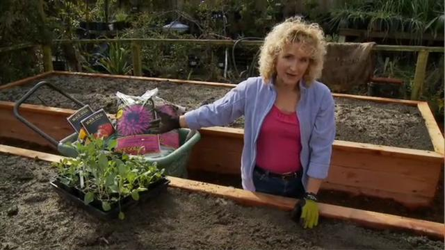 How To Plant A Raised Bed