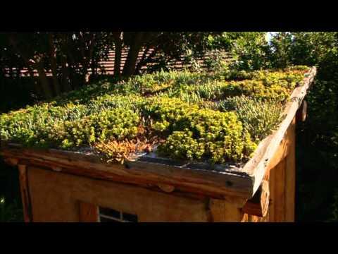 Virtual Tour- The Water Conservation Garden