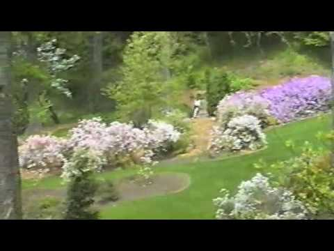 Biltmore In Spring
