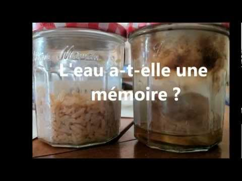 Expérience du riz - Mémoire de l'Eau - Julien Allaire Naturopathe