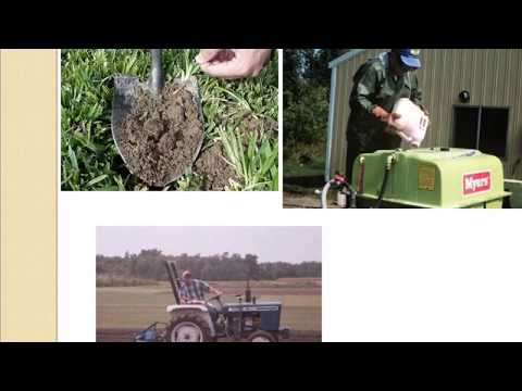 Jon Hill Turf | How to manage Turfgrass and What is Turf Grass