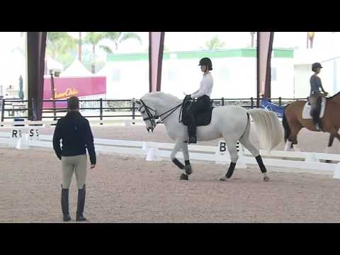 Robert Dover:  How To Create Collection And Maintain The Rhythm In Dressage