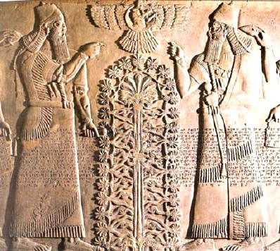 dna-Mesopotamian-Tree of Life