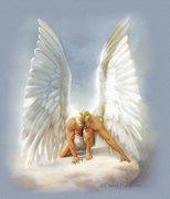 luz e anjos