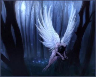 anjo solitario