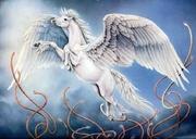 Meu Pegasus