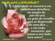 felicidade796