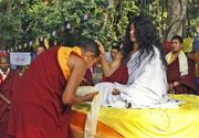 Reencarnação de Buda
