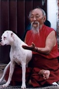 Chagdud TULKO Rinpoche