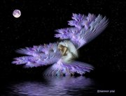 anjo lilás