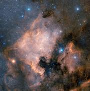 North_America_Nebula_NGC_7000_525