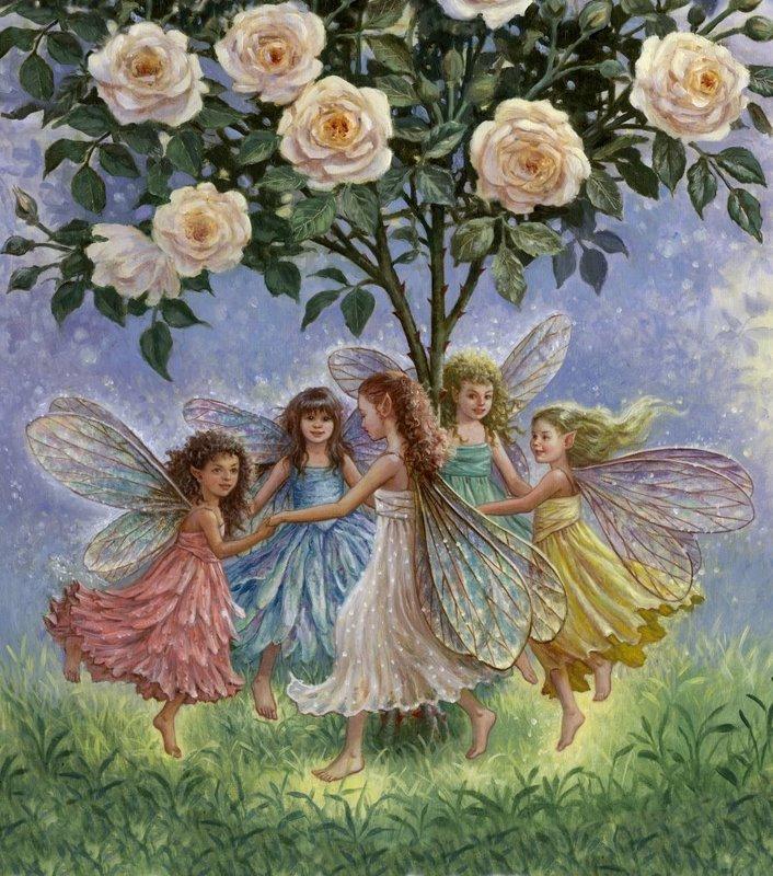 roda de anjos