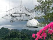 arecibo-observatory1