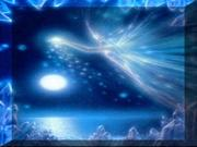 fu anjos luz 002 T