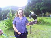 Parque dos Falcões - Sergipe [Julho/2008]