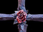 rosa cruz azul