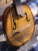 Rebuilt mandolins