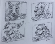 Red Dog drawings
