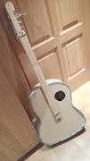 Cardboard Acoustic