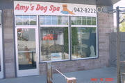 Amy's Dog Spa at 2165 Van Giesen