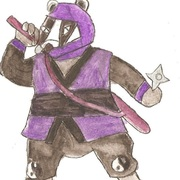 Matt II (Ninja-Badger)