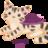 Rachel 2 (Turtlecat)