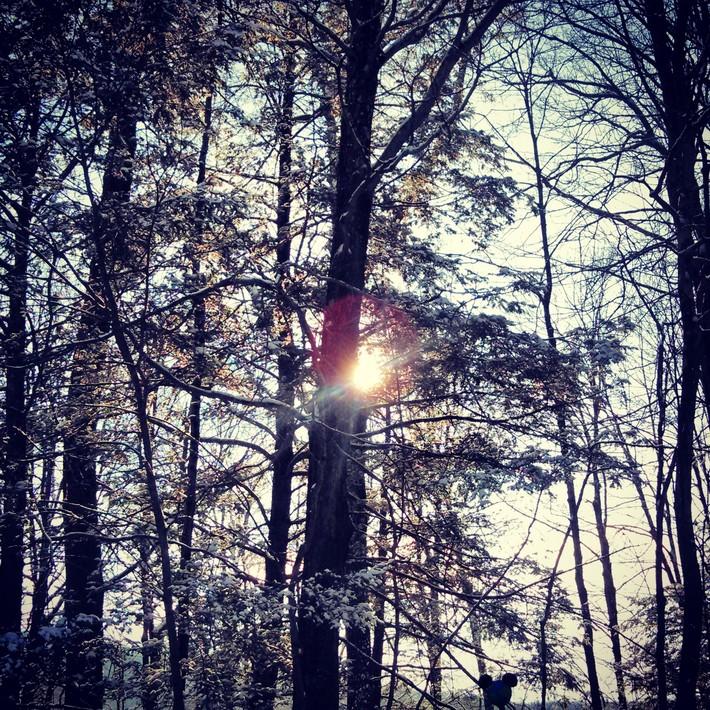 Sunlight and Snow