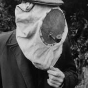 Bosque Bees