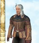 My Vanguard Human Druid