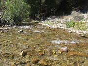 ophir canyon day trip and my first you tube video 014