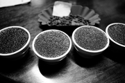 Cupping Spread