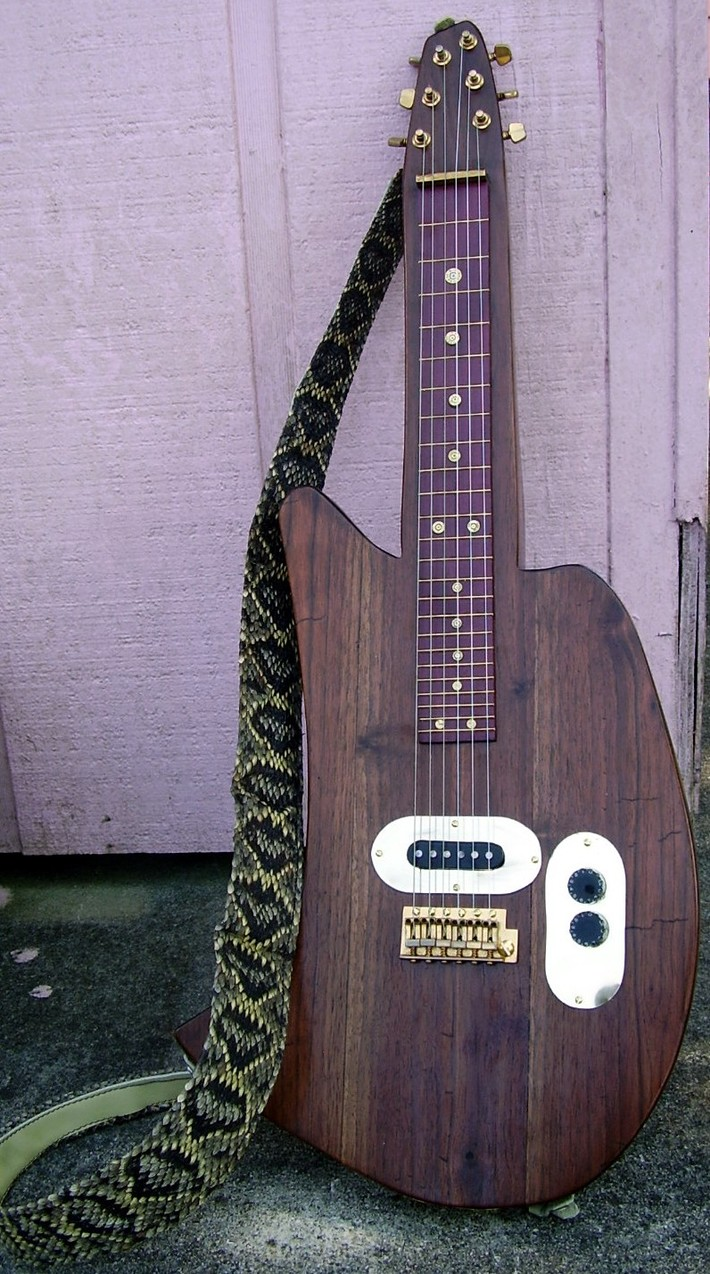 First guitar project