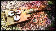 The Kiwaidae, another Recycled Box Guitar