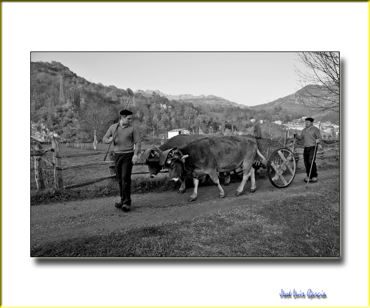 Asturias Nº3
