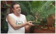 A ARTE BONSAI -MAURO M.S