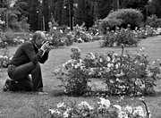 il fotografo di rose