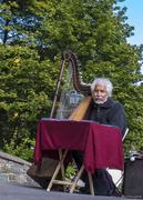 _..musicista...sul declino...!!
