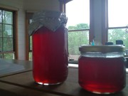 (vic) hawthorn berry jelly