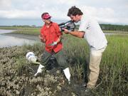 David Kimbro explains oyster reef dynamics