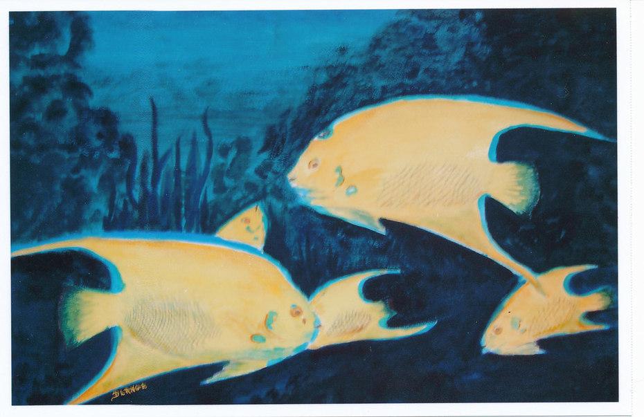 Zoo Fish