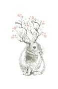 BunnyIphone