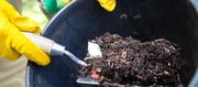 World Environment Day: Composting, worm farm and waste reduction workshop - McDowall
