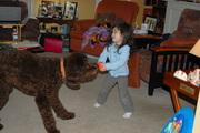 Let's Play Bear!