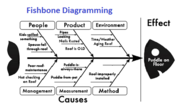 Your Most Burning Questions About Fishbone Diagramming 2019