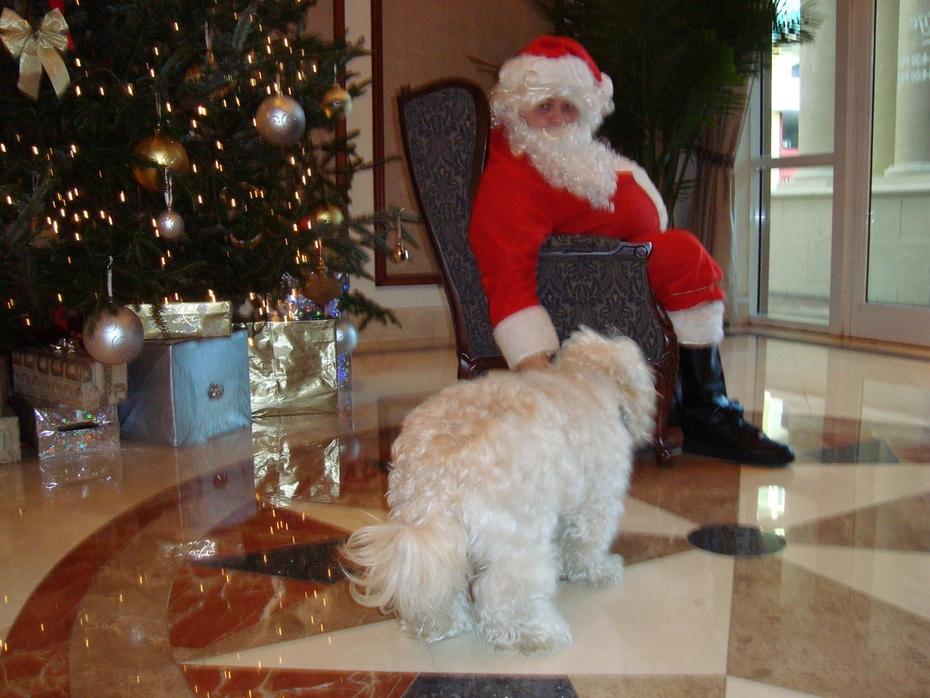 Beau and Santa 2009