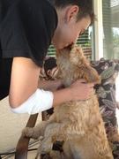Bailey kissing her boy