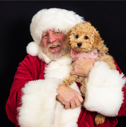 Lulu meets Santa