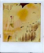 abstract pola 01