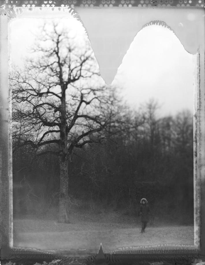 """Me and the trees #3."""" Non più solitari, al margine della radura, noi siamo""""."""